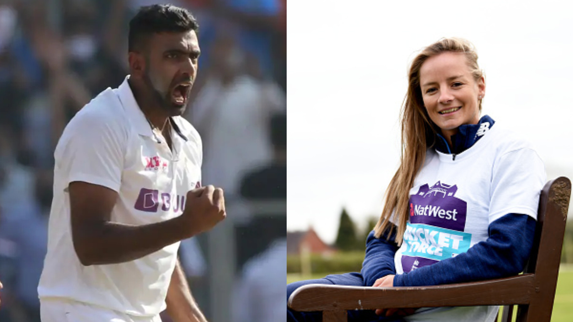 R Ashwin and Danielle Wyatt's hearty conversation on Twitter is pure gold