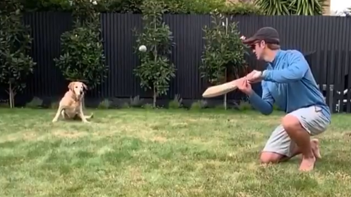 WATCH: Kane Williamson gives his dog slip catches during self-isolation