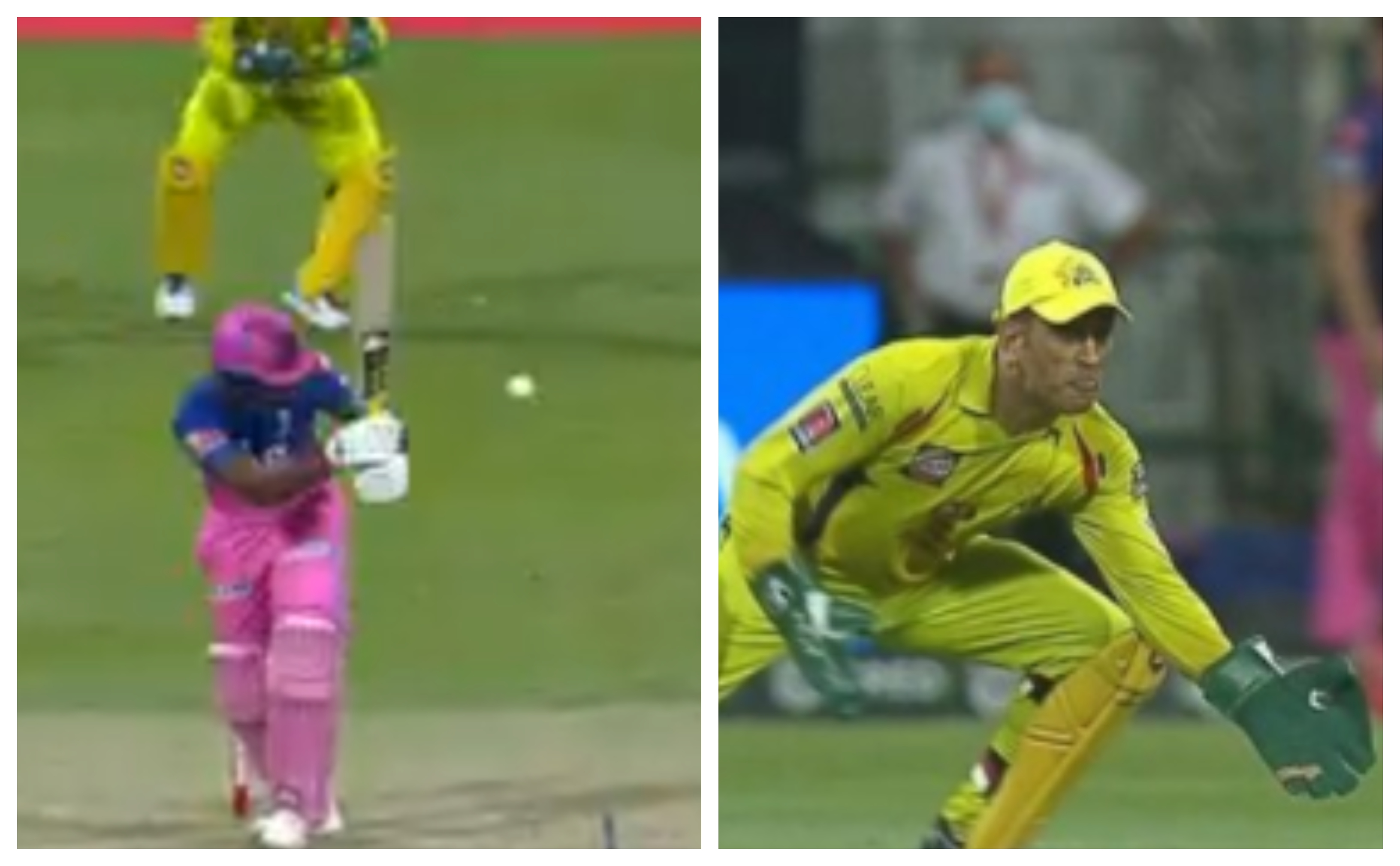 MS Dhoni took an outstanding catch to remove Sanju Samson | Screengrab