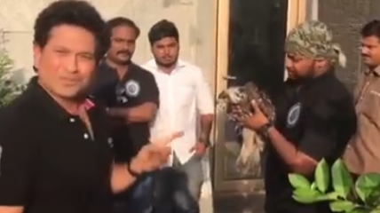 WATCH: Sachin Tendulkar helps a bird to fly again and shares a strong message with his fans