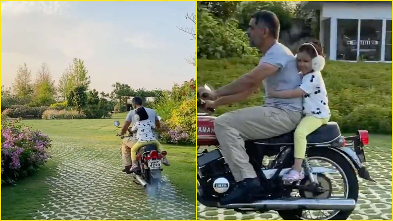 WATCH: MS Dhoni goes for a run with Ziva; plays with pet dog at ...