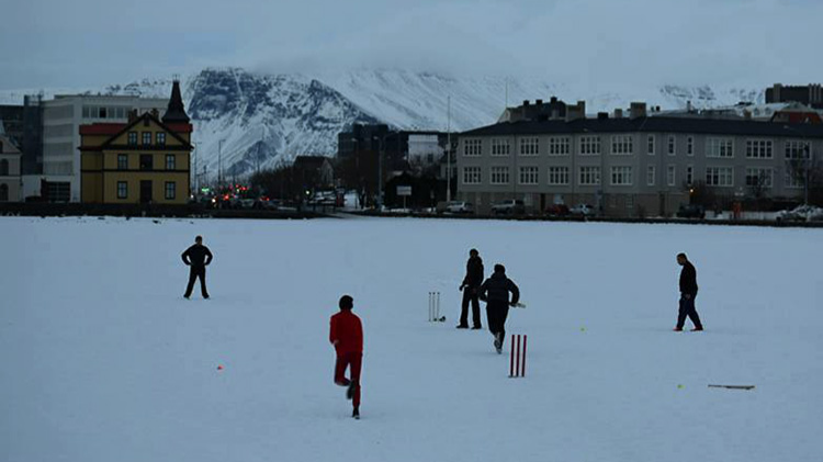 Iceland Cricket is winning Twitter with their hilarious tweets