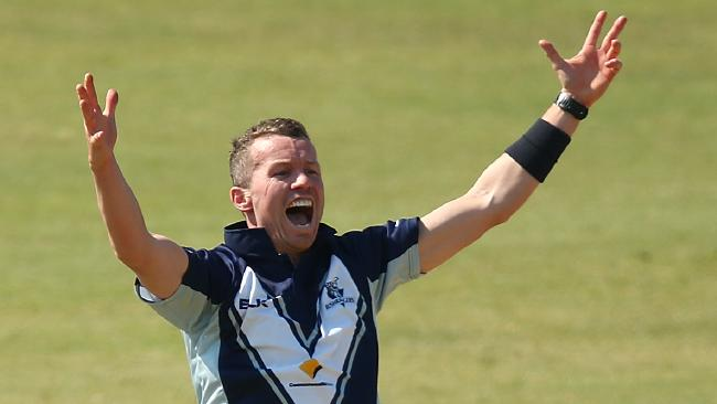 Peter Siddle | Source Getty