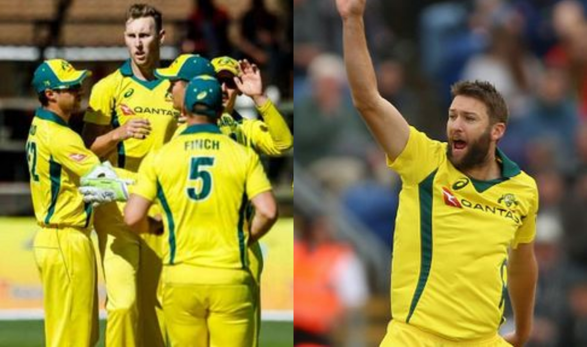 Andrew Tye and Billy Stanlake