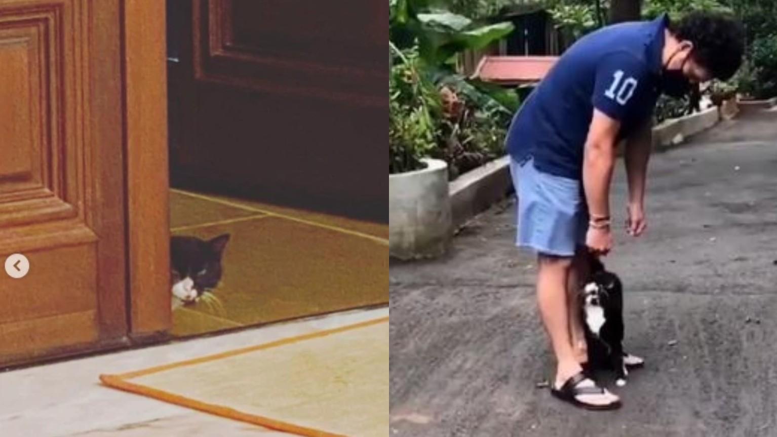 "WATCH- ""My vada-pav loving feline friend is back,"" Sachin Tendulkar shares encounter with a cat"