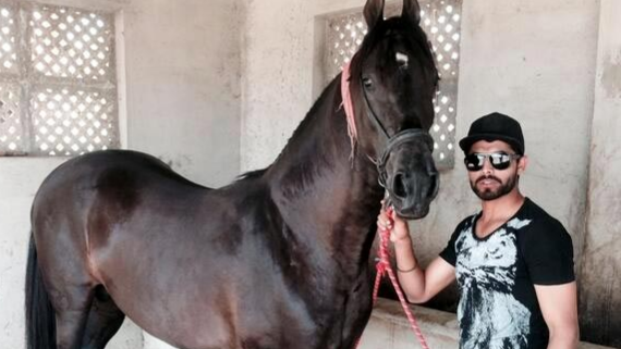 Ravindra Jadeja shares picture after getting tattooed for his horse
