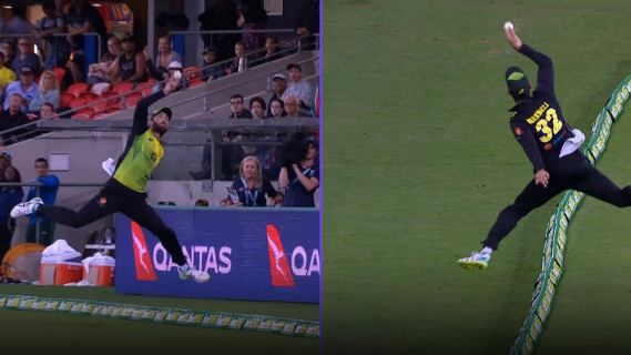 AUS v SA 2018: WATCH- Glenn Maxwell flies in the air to pull off a smooth catch on boundary