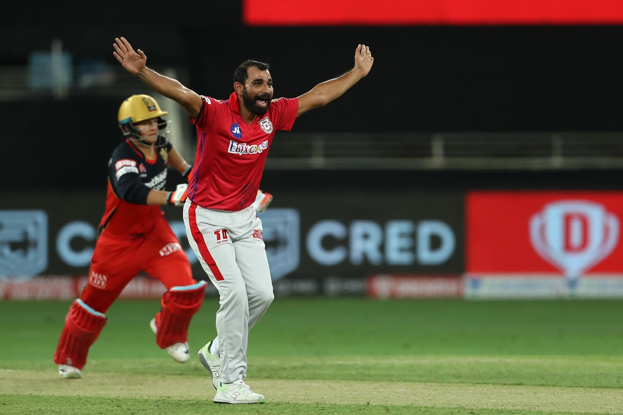 Mohammad Shami has been looking for some support from the other end | BCCI/IPL