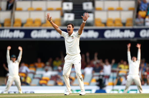 Mitchell Starc has taken most (26) wickets in day night Test cricket. (photo - getty)