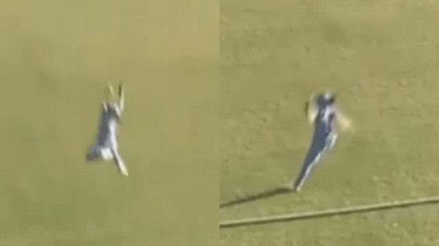 WATCH: Harmanpreet Kaur's one-handed stunner to deny Stafanie Taylor a ton in first WODI