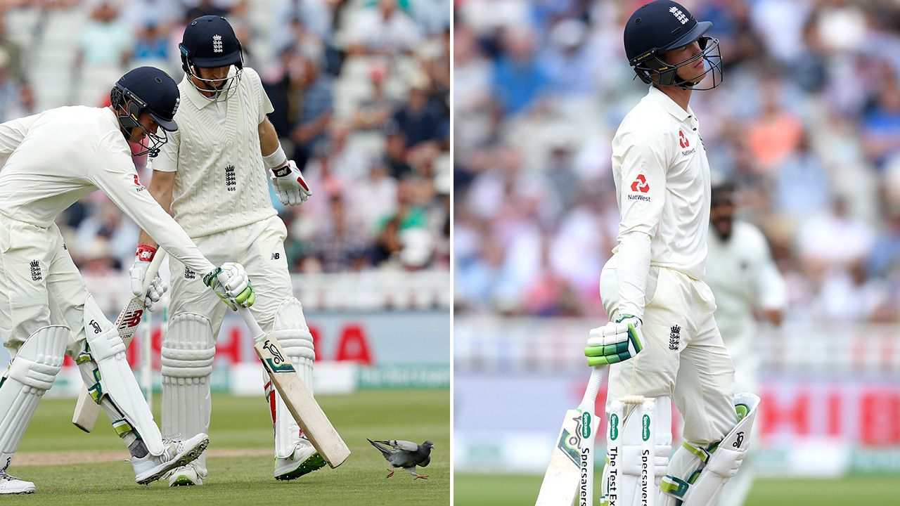 ENG v IND 2018: Keaton Jennings refuses to blame the pigeon for his dismissal