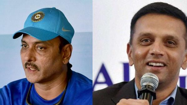 BCCI pay due salaries to Ravi Shastri and Rahul Dravid