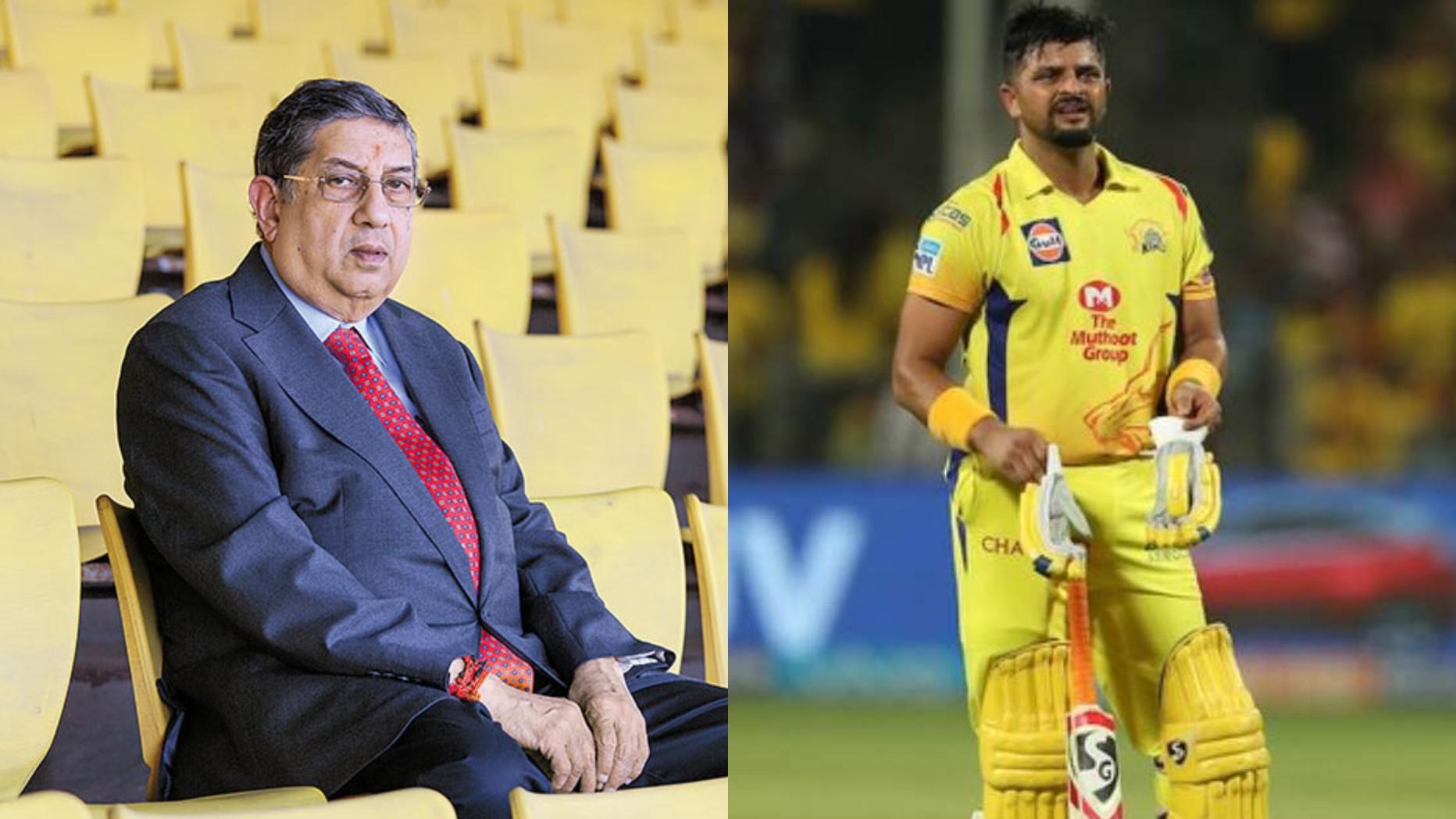 IPL 2020: CSK owner N Srinivasan calls Suresh Raina 'prima donna'; suggests success has gone into his head