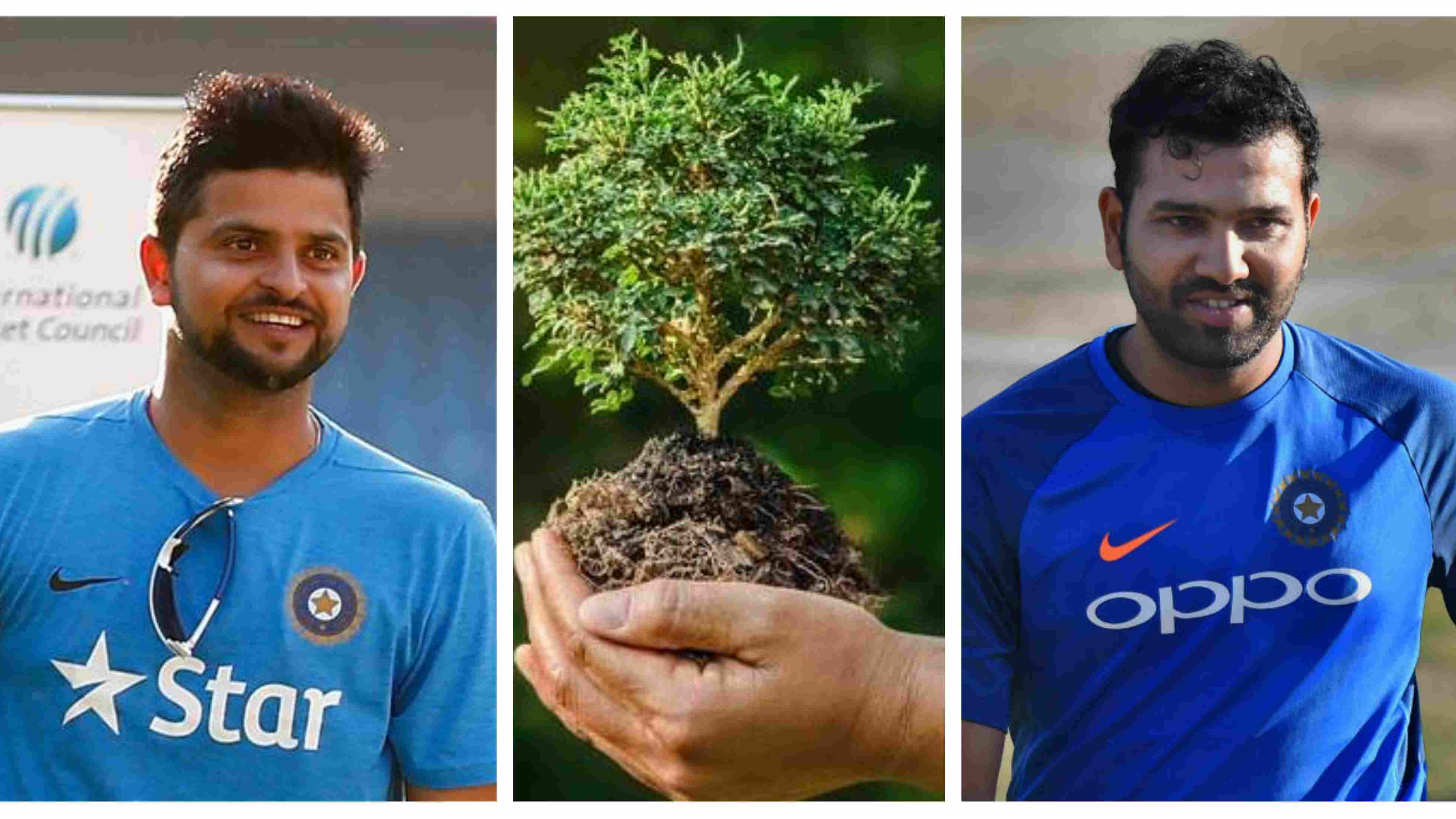 Indian cricketers' insightful tweet on the occasion of 'World Environment Day'
