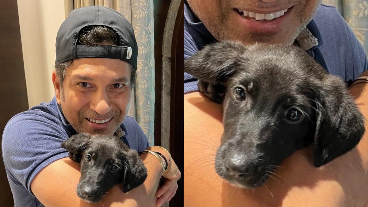 Sachin Tendulkar's adorable post introducing his new pet Spike wins the internet