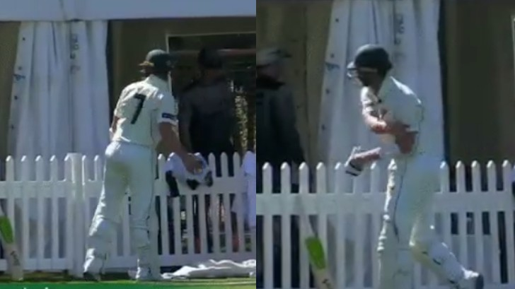 WATCH: Tasmania's Tim Paine throws gloves in rage after being given out LBW