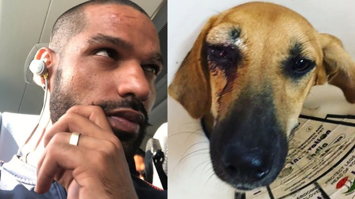 Shikhar Dhawan raises his voice against the animal cruelty