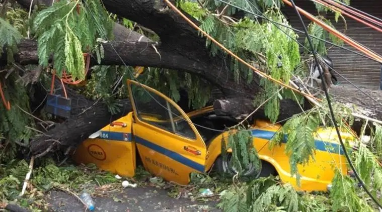 Destruction caused by Cyclone Amphan in Kolkata