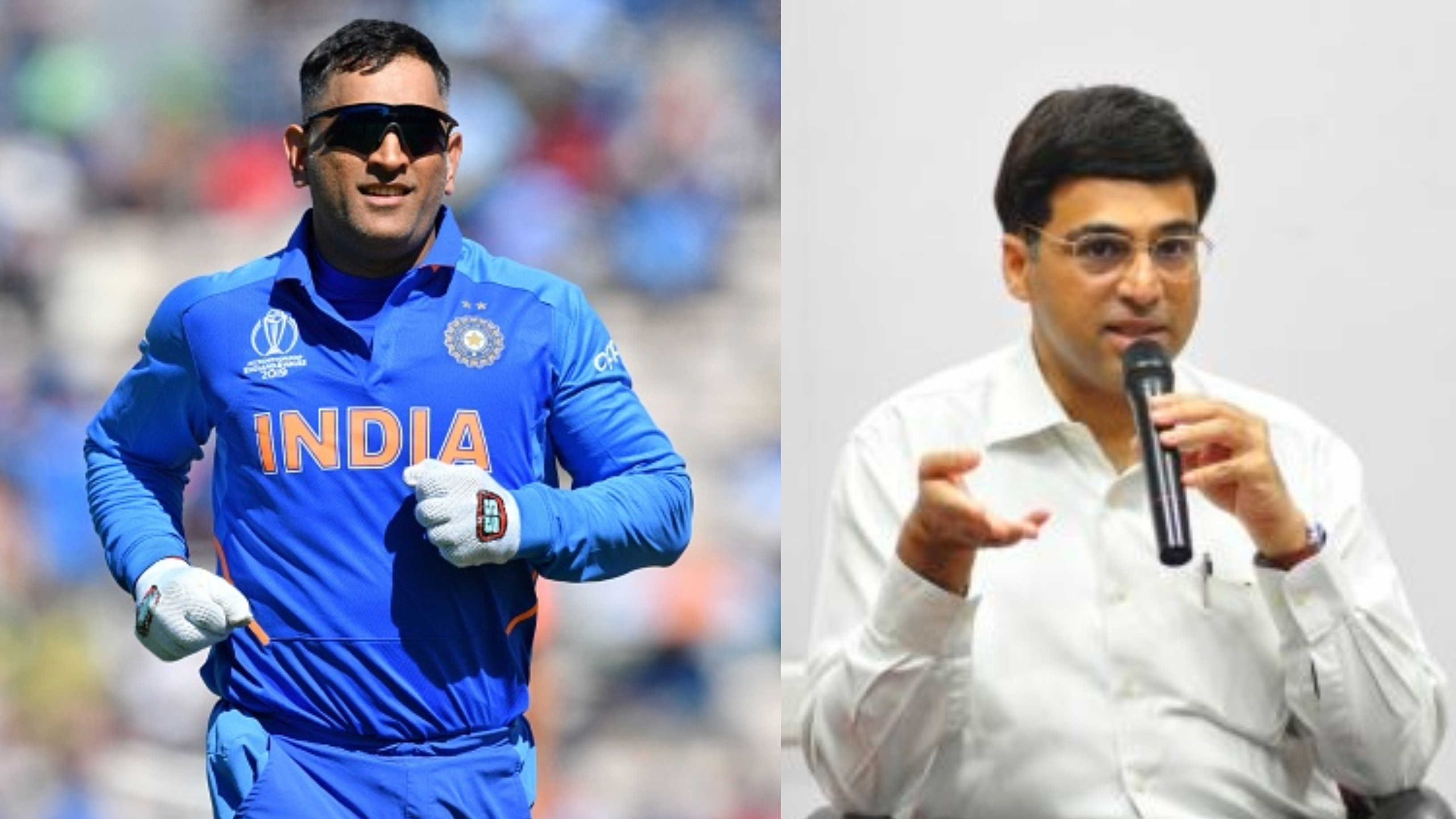 Viswanathan Anand feels there's nothing left for MS Dhoni to achieve