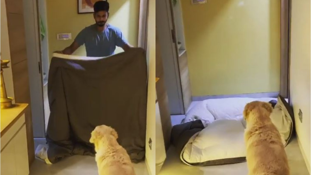 WATCH- Shreyas Iyer 'disappears', leaving his pet dog startled