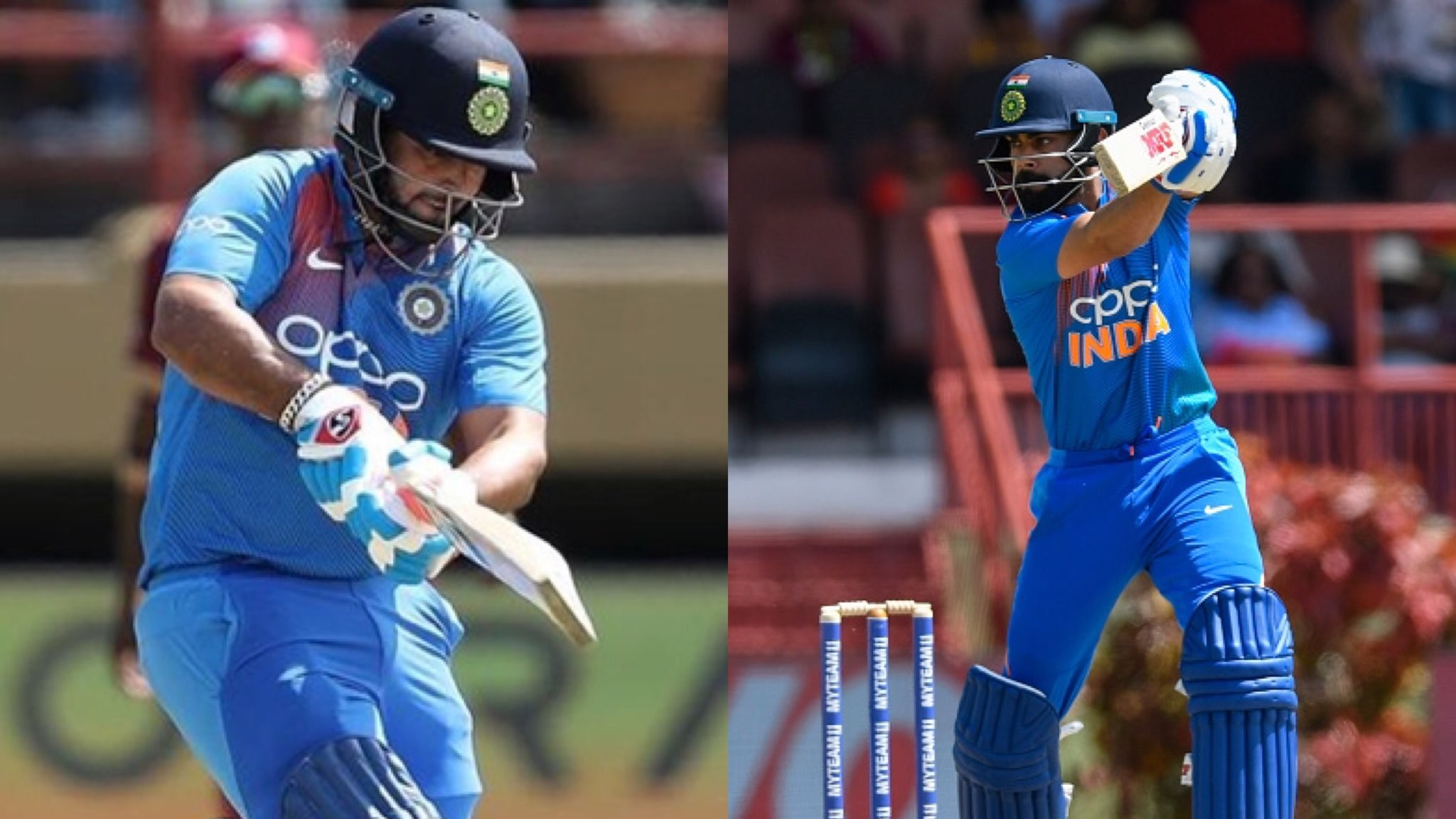 WI v IND 2019: 3rd T20I- Pant, Kohli fifties hand India a seven-wicket win; whitewash West Indies 3-0