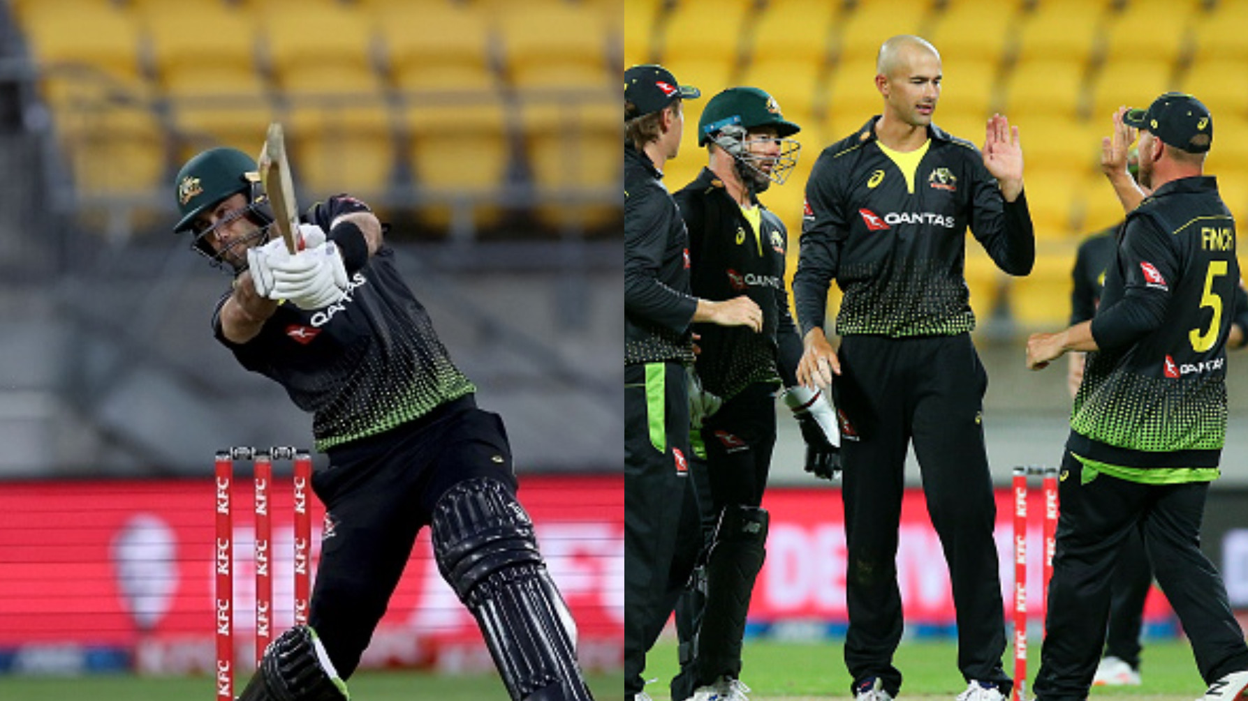 NZ v AUS 2021: Maxwell's 70 and Agar's 6/30 help Australia down New Zealand by 64 runs in 3rd T20I