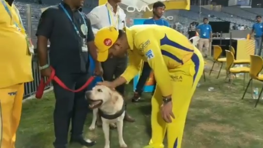 WATCH: MS Dhoni gets a special salute from the security dog