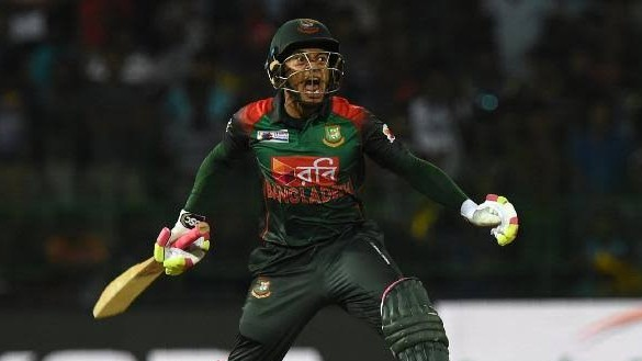 IND v BAN 2019: Mushfiqur Rahim masterclass takes Bangladesh to first ever T20I win over India