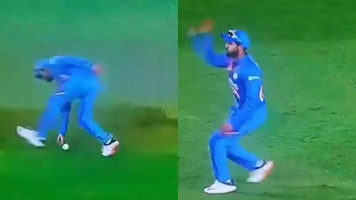 NZ v IND 2020: WATCH - Manish Pandey and Team India get away with fake fielding instance