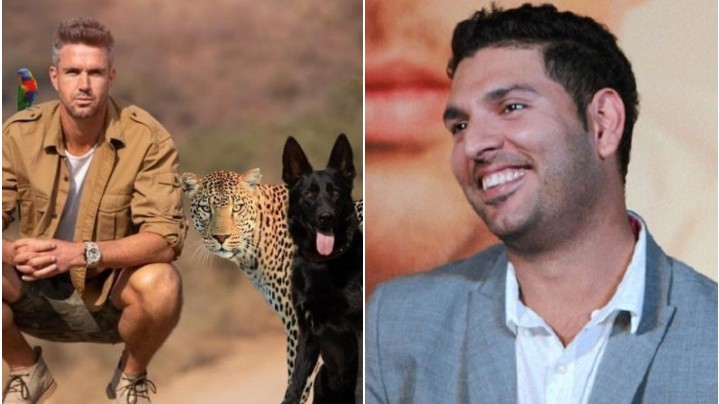 Kevin Pietersen gets roasted by Yuvraj Singh for posing with a leopard