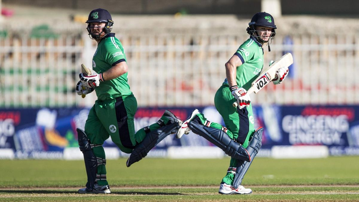 Ireland will look to make a statement when they play against India next week. (AFP)